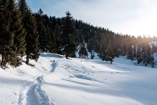 Free Snowy Landscape With Footpath Royalty Free Stock Photography - 83063957