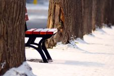 Free Park Bench In Winter Snow Stock Photo - 83064000