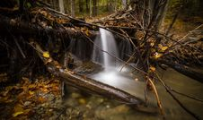 Free Time Lapse Photography Of Falls Surrounded By Trees Stock Photos - 83064593