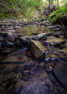Free Time Lapse Photo Of Stream On Green Forest Royalty Free Stock Image - 83064636