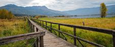 Free Brown Wooden Bridge Beside Green Grass Field Stock Image - 83064711