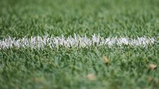 Free White Line On Green Grass Royalty Free Stock Photography - 83065167