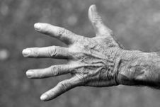 Free Grayscale Photo Of Left Human Hand Stock Photography - 83065172