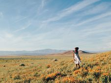 Free Woman In White Sundress Standing On Flower Field During Daytime Stock Image - 83065201