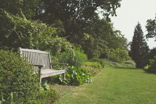 Free Garden With Bench Stock Images - 83065394