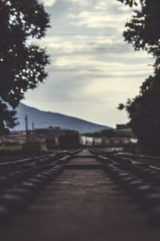 Free Train Railways Beside Large Trees Stock Photos - 83065633