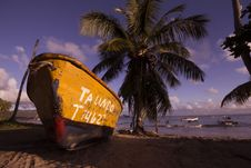 Free Brown And Black Boat On Shore Near Coconut Trees Under Blue Sky And Clouds Royalty Free Stock Photo - 83065635