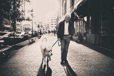Free Man Walking Dog Royalty Free Stock Image - 83065716