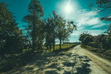 Free Shadows Of Tree On Road Stock Image - 83065731
