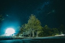 Free Night Photography Of Tree Stock Images - 83065734