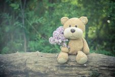 Free Brown Teddy Bear Holding Pink Flower Bouquet Royalty Free Stock Image - 83065796