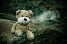 Free Brown Teddy Bear Sitting On Edge Of Pavement Royalty Free Stock Photography - 83065797