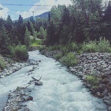 Free River Between Of Grey Pebbles And Green Trees Stock Photo - 83066330