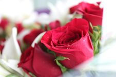 Free Red Rose Bouquet Royalty Free Stock Images - 83066439