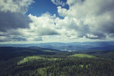 Free Green Forest Under Dark Cloudy Sky During Daytime Stock Image - 83066931