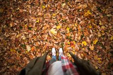 Free Person Standing On A Ground With Dry Leaves Royalty Free Stock Photos - 83067258