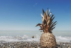 Free Pineapple On Beach Royalty Free Stock Images - 83067479