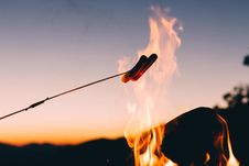 Free Hotdog In Stick Cook In Fire Stock Image - 83067511