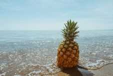 Free Pineapple In Sea Stock Photos - 83067513