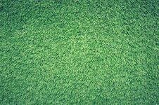 Free Green Grass Lawn Royalty Free Stock Photos - 83067538