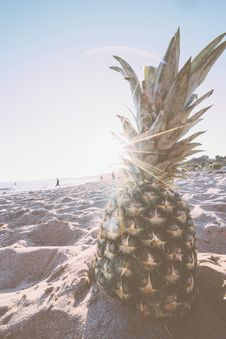 Free Pineapple In Gray Sand During Daytime Royalty Free Stock Photography - 83067817