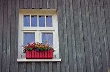 Free Red And Yellow Flowers Near Window Stock Images - 83068084