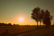 Free Silhouette Of Trees Against Sunset Stock Photo - 83068180