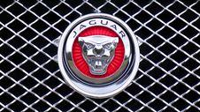 Free Jaguar Emblem Stock Images - 83068184