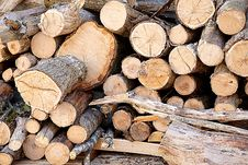 Free Brown Fire Wood Stock Photography - 83068192