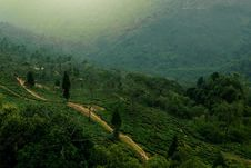 Free Aerial View Of Green Hills With Paths Royalty Free Stock Photography - 83074057