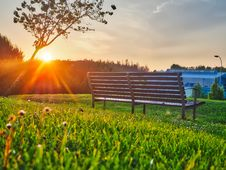 Free Brown Bench On Green Grass Stock Photos - 83074133