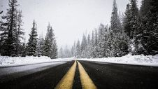 Free Road Through Snowy Forest Royalty Free Stock Images - 83074939