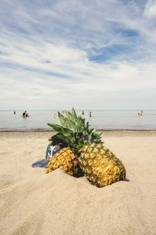 Free Pineapples On Sandy Beach Royalty Free Stock Images - 83074949