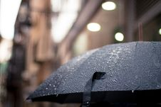 Free Umbrella In The Rain Stock Photo - 83075710