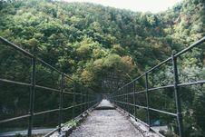 Free Black Bridge On Forest Stock Photo - 83077850