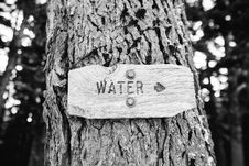 Free Tree Crust Stock Photo - 83078140
