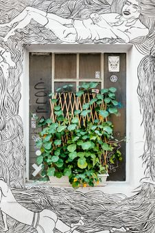 Free Green Potted Plant On Grafitti Character Wall Stock Images - 83078384