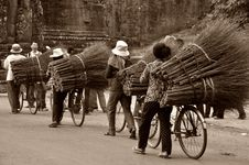 Free Asian Workers Transporting Brooms Stock Photography - 83078642