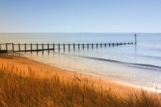 Free Green Grass Near Shoreline Beside Sea Under Blue Sky Royalty Free Stock Image - 83079096