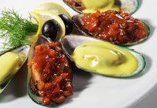 Free Mussels Plate Stock Image - 8310221