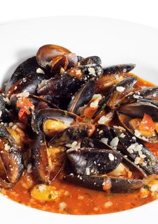 Free Mussels Bowl Royalty Free Stock Images - 8310409