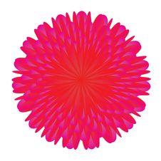 Free Flower Stock Image - 8311061