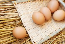 Free Eggs Royalty Free Stock Image - 8311286