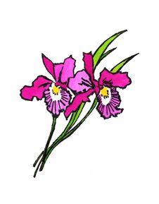 Free Flower Royalty Free Stock Photo - 8311515