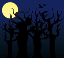 Free Trees In The Night - Vector Image Royalty Free Stock Photos - 8312918