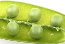 Free Fresh Pea Royalty Free Stock Photography - 8314097