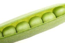 Free Green Pea Stock Photos - 8314543