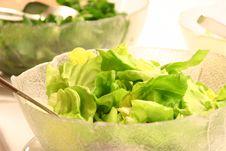 Free Salad Bowl Royalty Free Stock Photos - 8314898