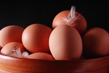 Free Eggs Stock Images - 8315144