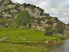 Free National Park Picos De Europa, Spain Stock Images - 8315794